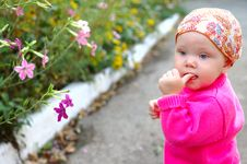 Free Pretty Little Girl With Flowers. Stock Photography - 8543182