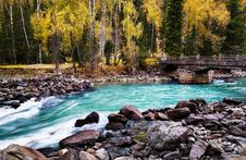 Free Autumn River Royalty Free Stock Photography - 8543747