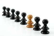 Free Chess Stock Image - 8544241
