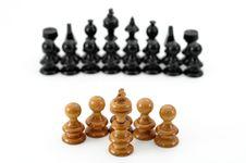 Free Chess Royalty Free Stock Photos - 8544338