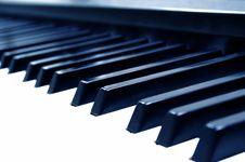 Free The Piano Keyboard Royalty Free Stock Photos - 8544378