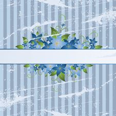 Free Floral Frame Stock Photos - 8545353