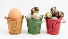 Free Eggs In Buckets Stock Photos - 8545903