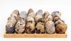 Free Eggs Grid Stock Image - 8545921