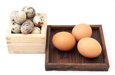 Free Eggs Zen Stock Images - 8546124