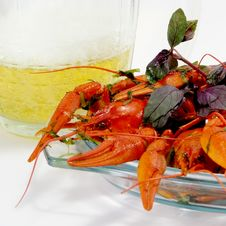 Crayfishes And Beer Stock Image