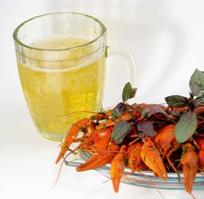 Free Crayfishes And Beer Stock Images - 8547064
