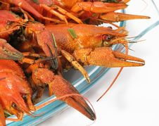 Free Red Boiled Crayfishes Stock Photo - 8547130