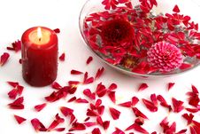 Free Candle And Petals A Flower Royalty Free Stock Images - 8547309