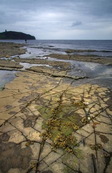 Free Kimmeridge Bay Fisures - Dorset, England Stock Image - 8547751