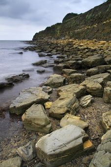 Free Rocks And Strata - Dorset, England Stock Images - 8547784