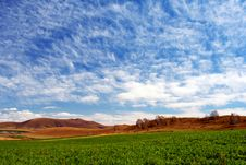 Free Bashang Grassland In Autumn, Good Harvest Royalty Free Stock Images - 8549109
