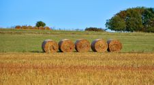 Free Bales Of Hay In Field Royalty Free Stock Photo - 85404895