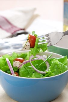 Free Salad With Greens Royalty Free Stock Images - 8551069