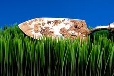 Free Dirty Garden Spade On Grass Royalty Free Stock Photography - 8551567