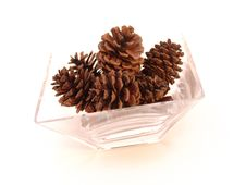 Free Pine Cones In Glass Dish Royalty Free Stock Image - 8551646