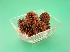 Free Pine Cones In Glass Dish Royalty Free Stock Photo - 8551665