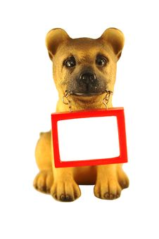 Free Dog With A Message Royalty Free Stock Photos - 8553908