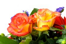 Bouquet  Of Roses And Gerber Royalty Free Stock Images