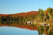 Free Autumn Reflection On Flack Lake Royalty Free Stock Image - 8554566