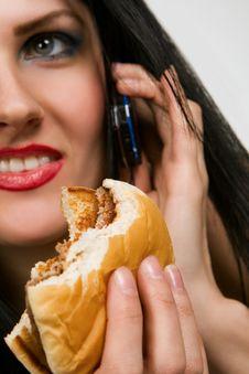 Free Tasteful Sandwich Royalty Free Stock Photography - 8557077