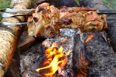 Free Appetizing Roasted Meat - Shish Kebab. Royalty Free Stock Images - 8557289