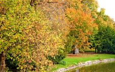 Free Park In Fall Stock Photo - 8558540