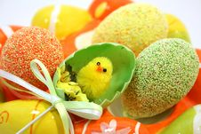 Free Easter Chick Stock Photos - 8558613