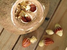 Free Sapucaia Nut Stock Images - 8558694