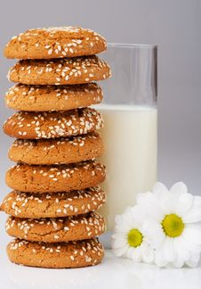 Free Cookies And Milk Stock Photos - 8559133