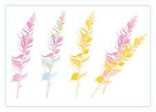 Free Colorful Feathers Royalty Free Stock Photo - 8559465
