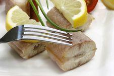 Free Fish Appetizer Stock Photo - 8559510
