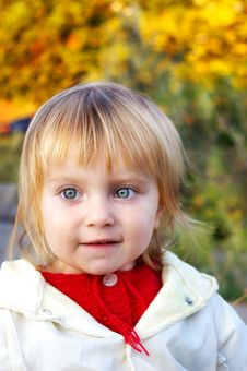 Free Cute Little Girl And Autum Royalty Free Stock Photography - 8559667