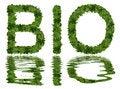 Free Bio Design Stock Photography - 8563542