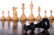 Free Fallen Black Chess Queen Stock Photos - 8561123