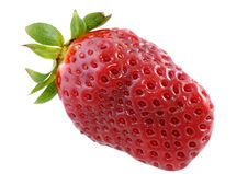 Free Strawberry Royalty Free Stock Images - 8562679