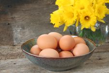 Free Brown Eggs Royalty Free Stock Photo - 8562685