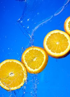 Free Orange Stock Photography - 8563892