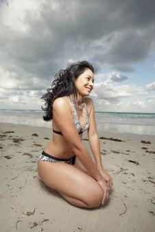 Free Woman On The Beach Stock Photo - 8568440