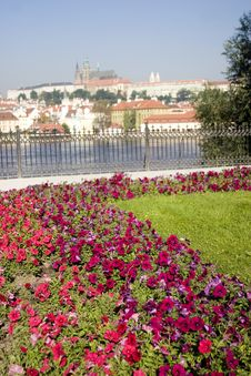 Free Cathedral With Foreground Flowers And River Stock Photography - 8569402