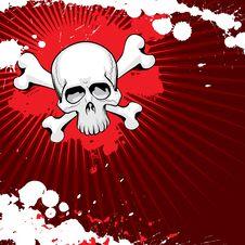 Free Grunge Skull Stock Images - 8570924
