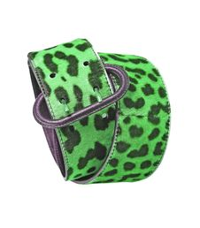 Free Green Leopard Leather Belt Royalty Free Stock Photo - 8572235