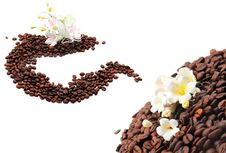 Free Coffee Seed With Sugar Flower Royalty Free Stock Photo - 8572325