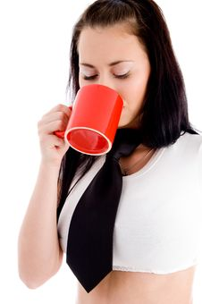 Free Young Female Drinking Coffee Royalty Free Stock Photo - 8573385