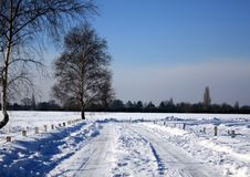 Free Snow Field Royalty Free Stock Photos - 8573948