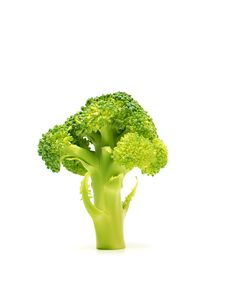 Free Broccoli 1 Royalty Free Stock Images - 8575689