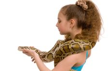 Girl With Pet Python Royalty Free Stock Image