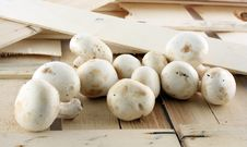 Free Fresh Mushrooms Royalty Free Stock Images - 8576489