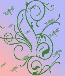 Free Dragon Flies Royalty Free Stock Image - 8577396