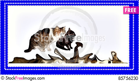 Free The Cat And The Cat Stock Photo - 85756230